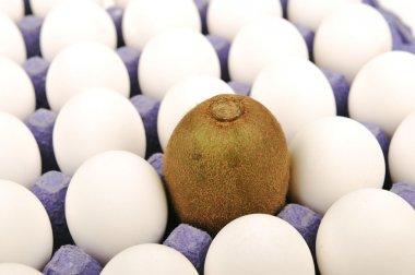 Alone kiwi, pretending to be an egg. White background. Unique concept, diff