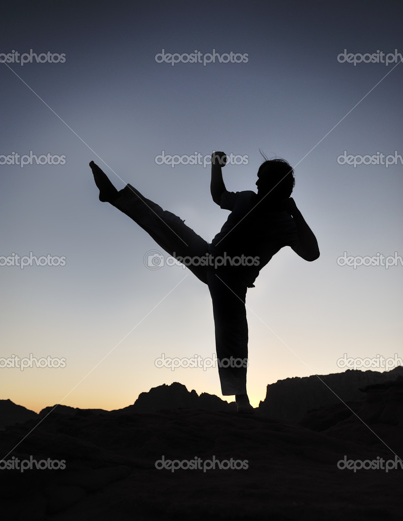 Karate fighter silhouette, young man doing an exercise of fighting sport, s