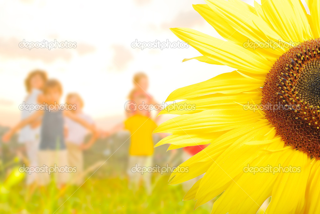 Happy childhool on green meadow, behind sunflower