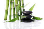 Wellness kameny a bambusových listů