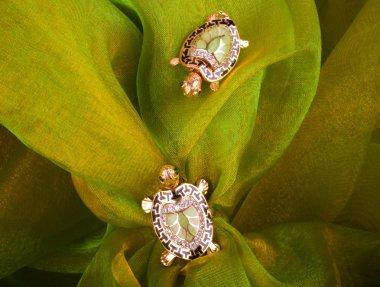 Beautiful golden tortoises on green background