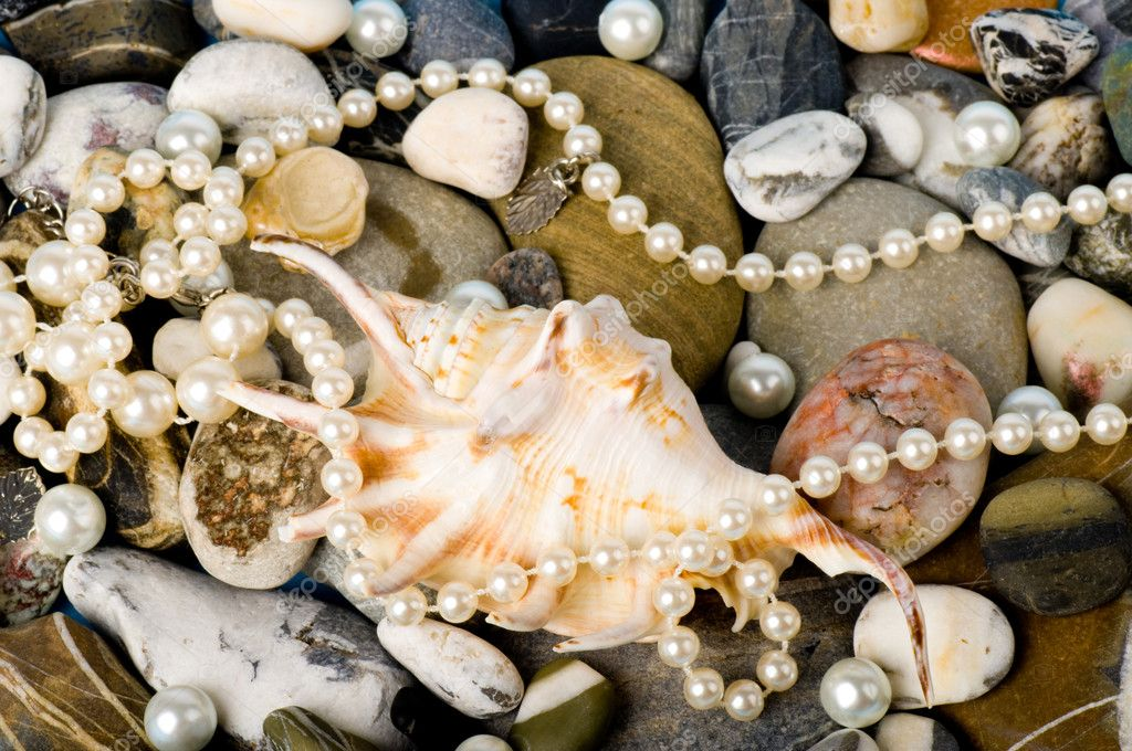 Beautiful exotic shell and stones, pearls