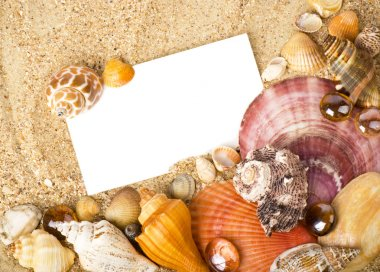 Beautiful exotic shell, stones, crystal with banner add on sand