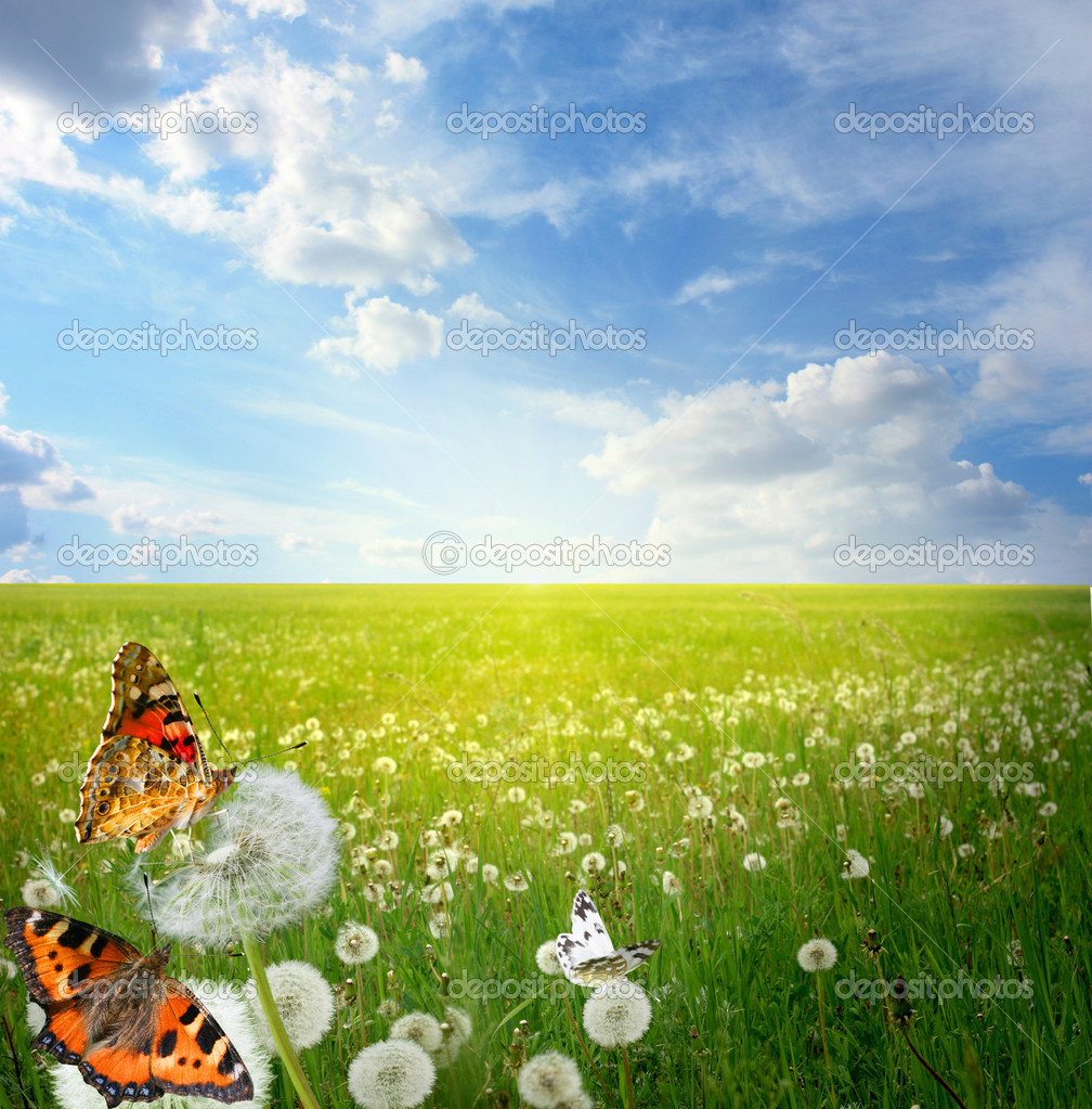 Beautiful landscape with colorful butterflies