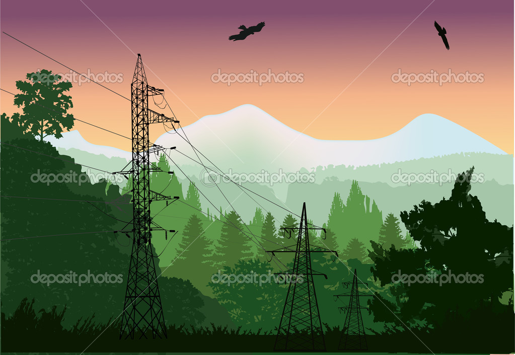 electric line in forest near mountains