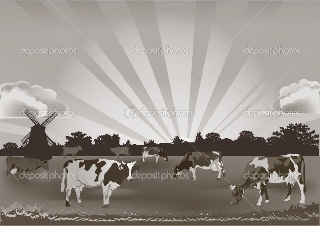 monochrome illustration with cows on field