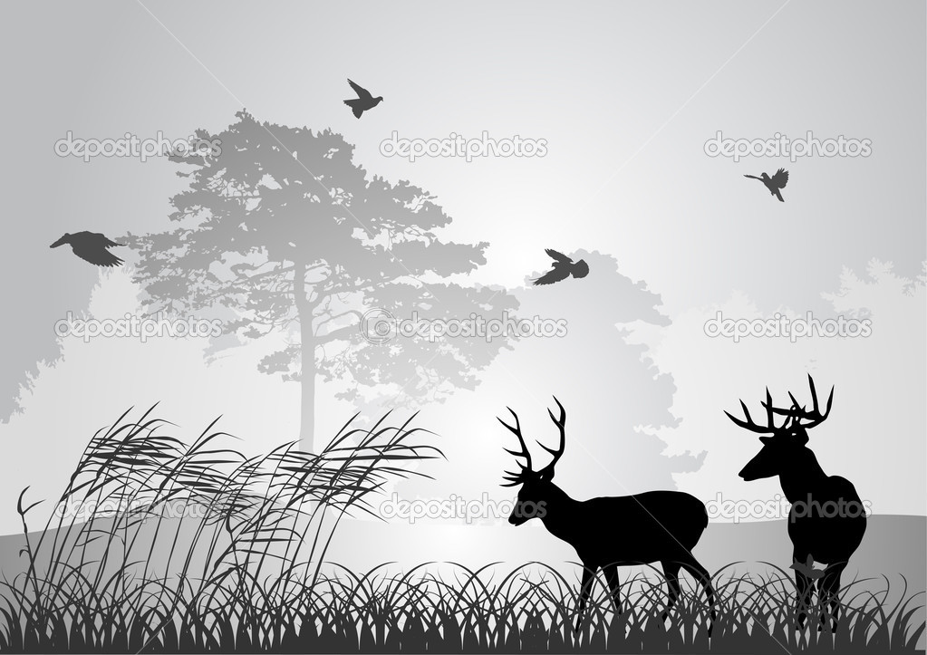 two black deer silhouettes in forest