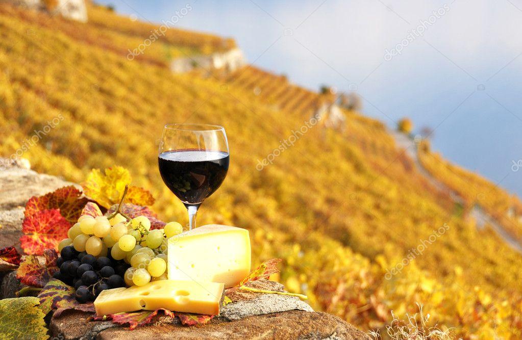 Vino Tinto Uvas Y Queso En El Viñedo De Terraza De Lavaux