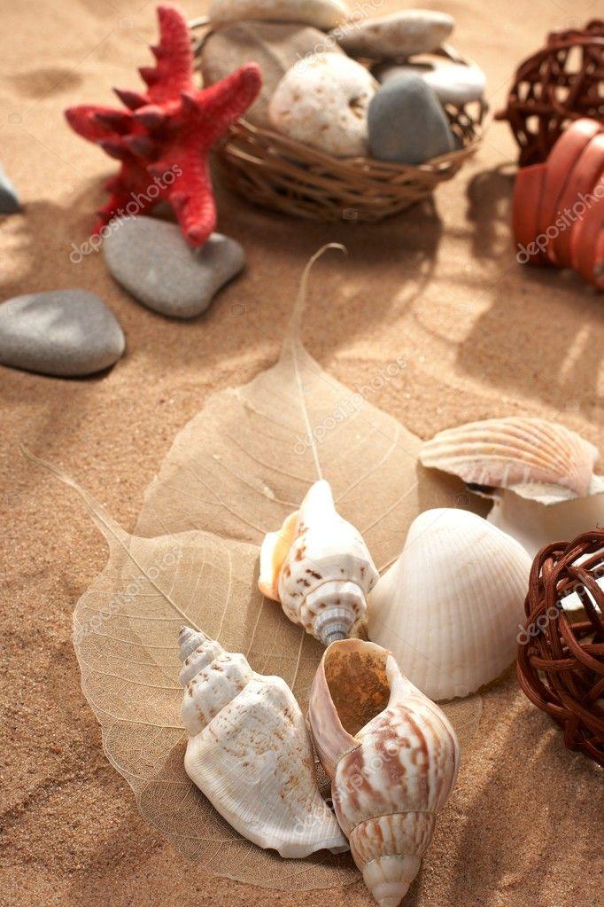 Sea still-life