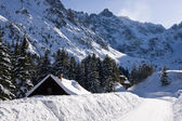 Fotografie horské Tater v zimní krajině