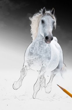 Runs white horse get living from arts scetch