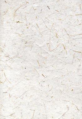 Handmade rice paper, scan texture