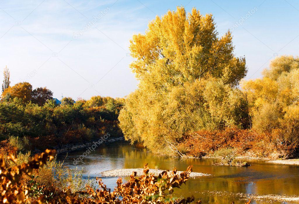 Autumn landscape at the park