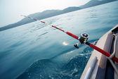 Fotografie losos trollování v moři