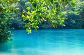 Photo Jamaica. A Blue lagoon. (Popular after shooting the film with same name)