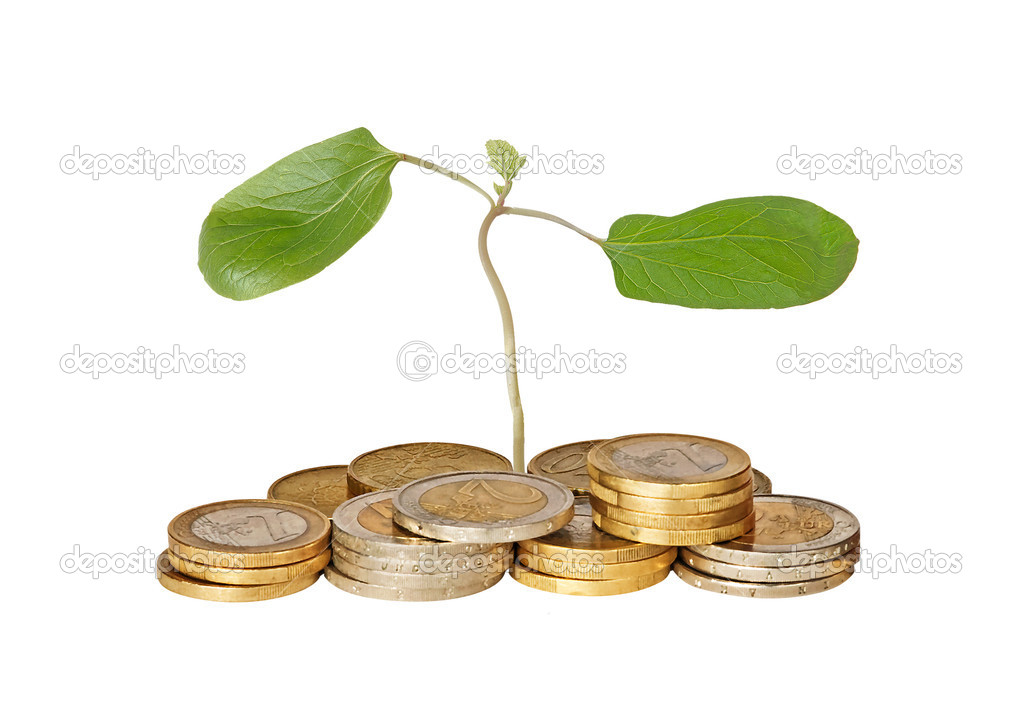 Castor oil tree sapling growing from pile of coins