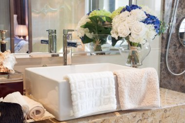 Modern style bathroom design with hand wash basin and other deco