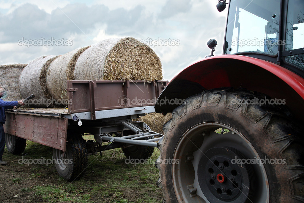 Tractor loaded feed straw