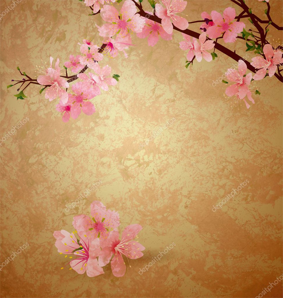 Spring blossom cherry tree and pink flowers on brown old paper g