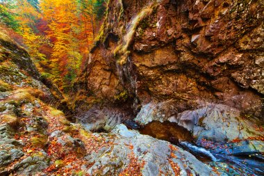 Mountain pass and creek