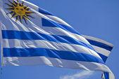 Fotografia Bandiera Uruguay da vicino