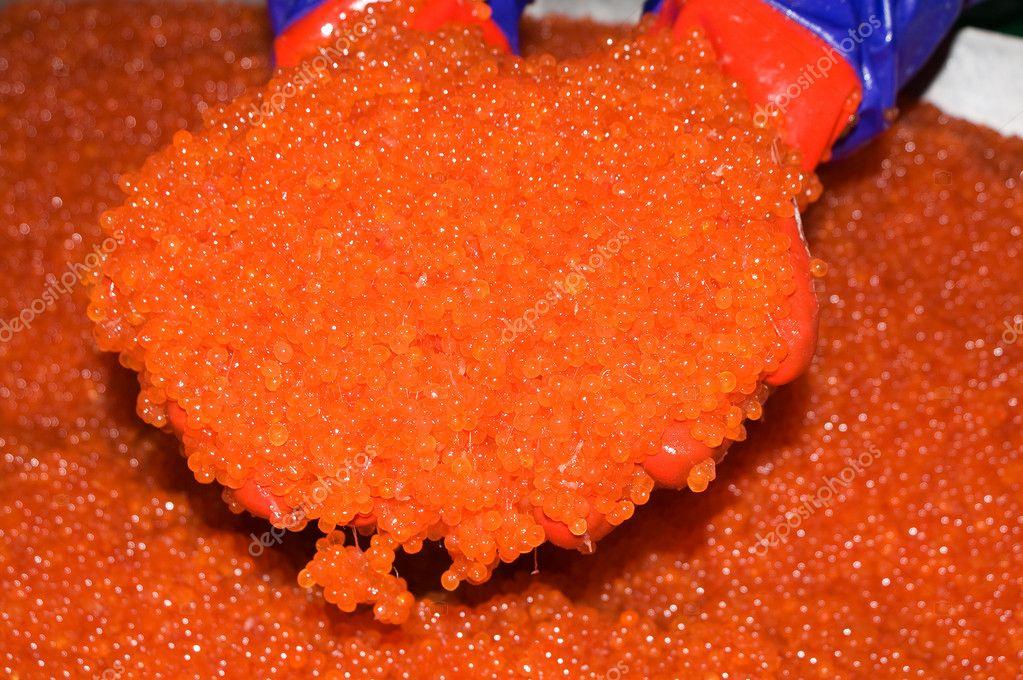 immagini uova di pesce uova di pesce rosso foto stock