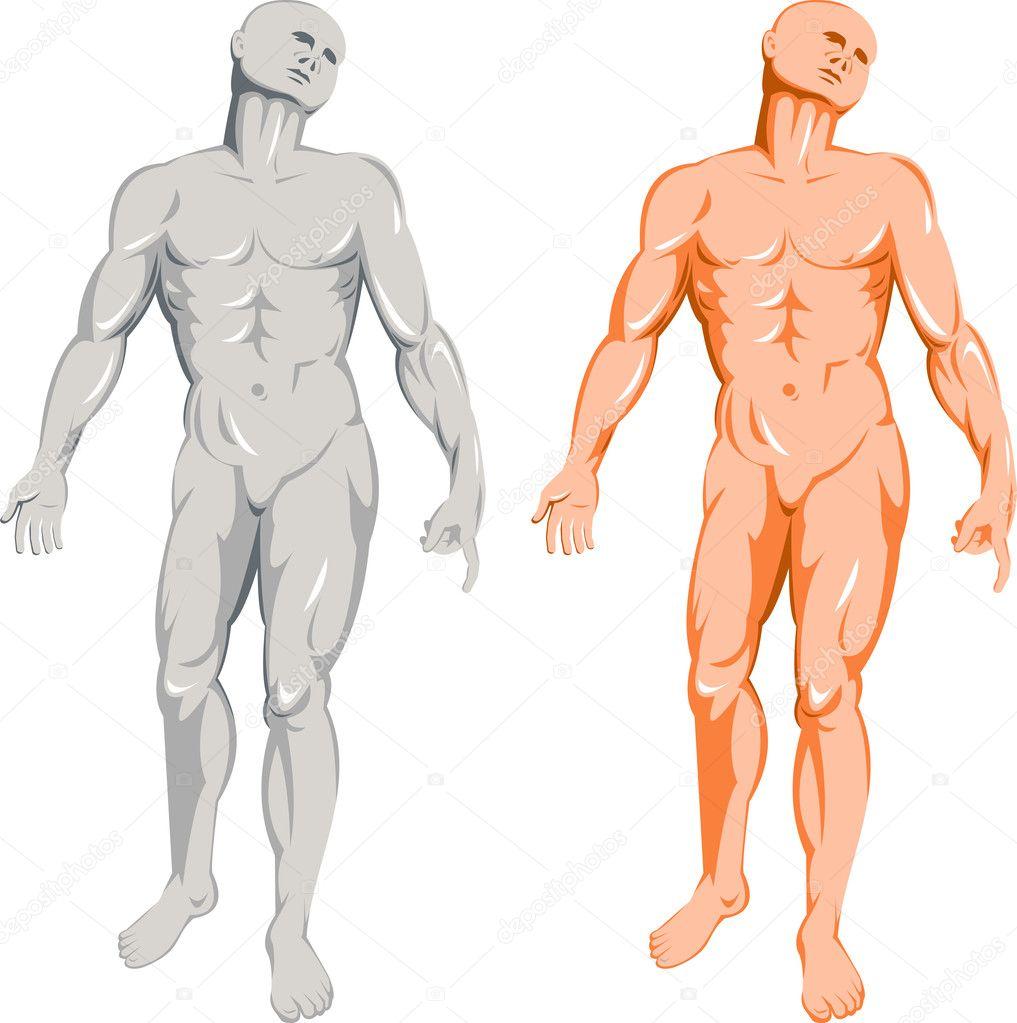 pie de anatomía masculina — Foto de stock © patrimonio #7977295