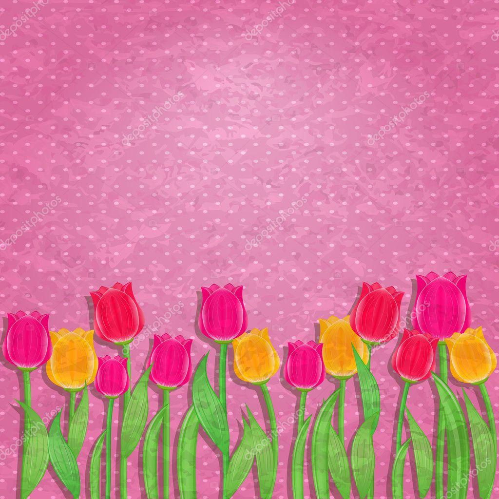 Fiore Tulipano Giallo E Rosso Su Sfondo Rosa Antico Vettoriali