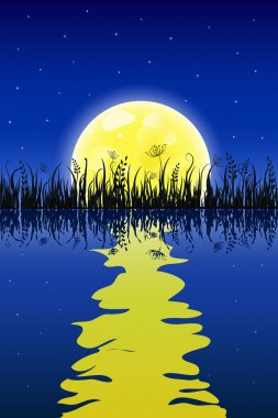 Yellow moon with reflection at water and grass meadow