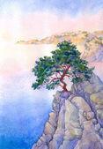 borovice na vysoké skalní útes nad mořem