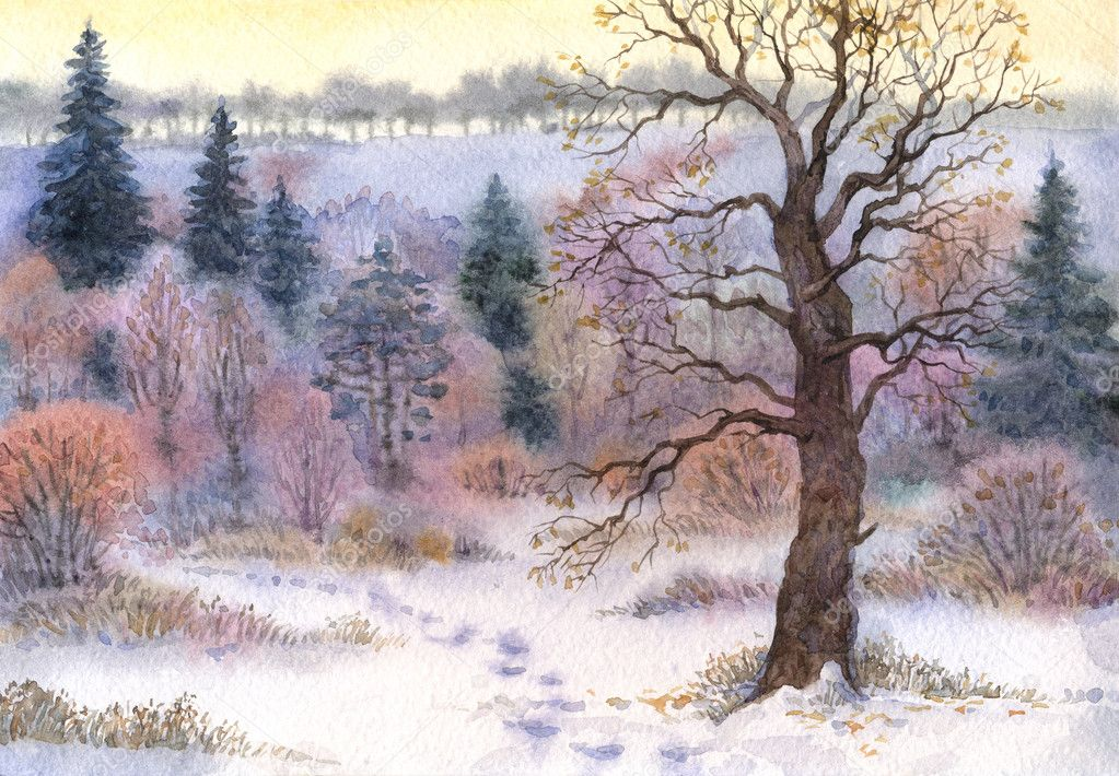 Watercolor landscape. Oak in the woods in winter the valley