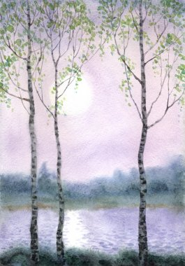 Watercolor landscape.Birch trees in quiet misty morning on the river