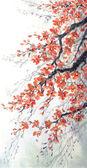 Fotografie Aquarell. Zweige der Blüten-Kirsche