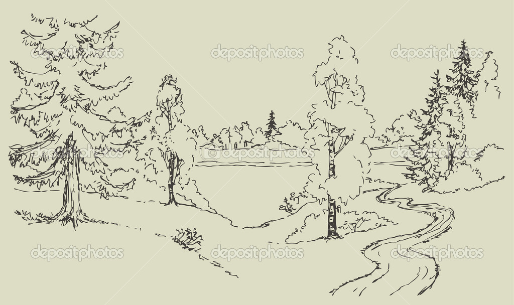 Vector landscape. Dirt road to the forest lake
