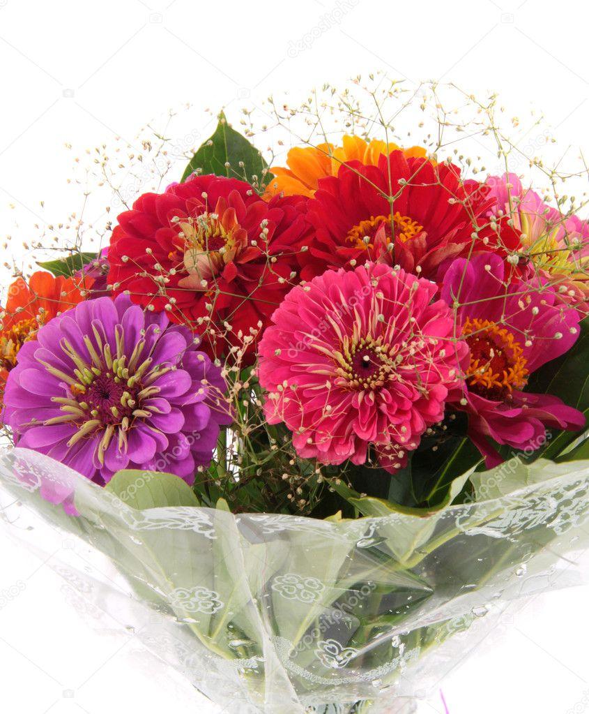 Bouquet multi-colored flowers. — Stock Photo © cs-333 #10483878