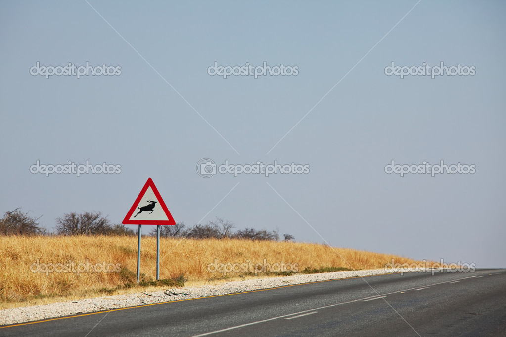 Road in Africa