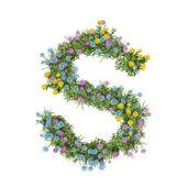 Buchstabe S, Blumenalphabet isoliert auf weiß