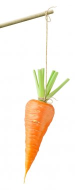 Carrot on a string