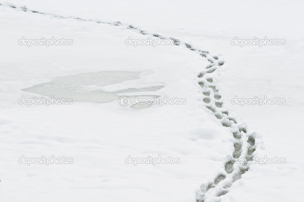 Winter path with human steps