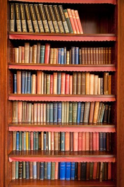 Old bookshelf in ancient library