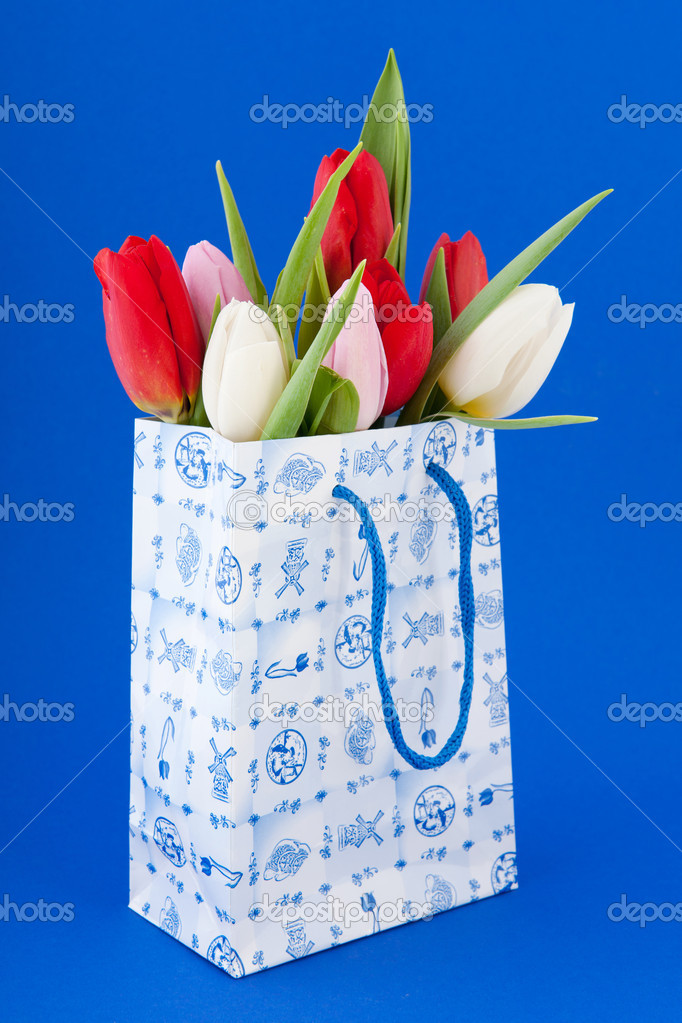 74279f76784 Nederlandse souvenir tas met tulpen — Stockfoto © ivonnewierink #9274460