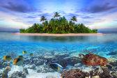 Fotografie tropický ostrov Maledivy