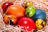 Fotografie Painted easter eggs