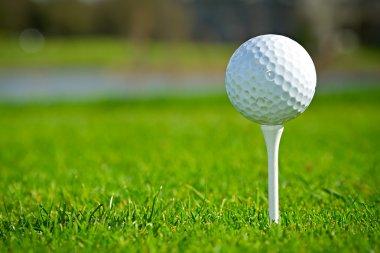 Golf ball on Irish course