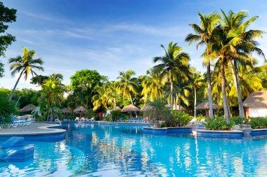 Tropical swimming pool at sunrise