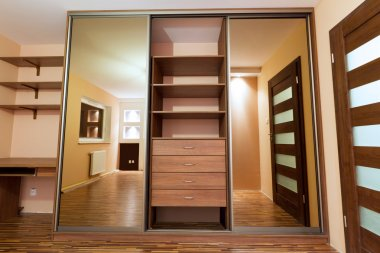 Huge wardrobe of modern apartment