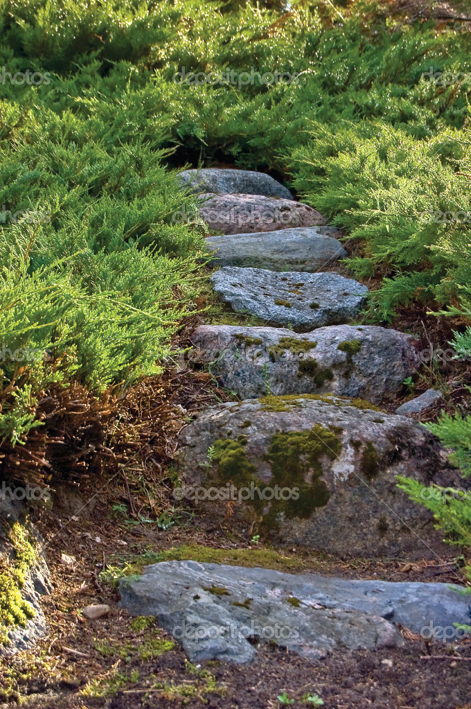 Stone pathway, granite rock stairway path in summer garden