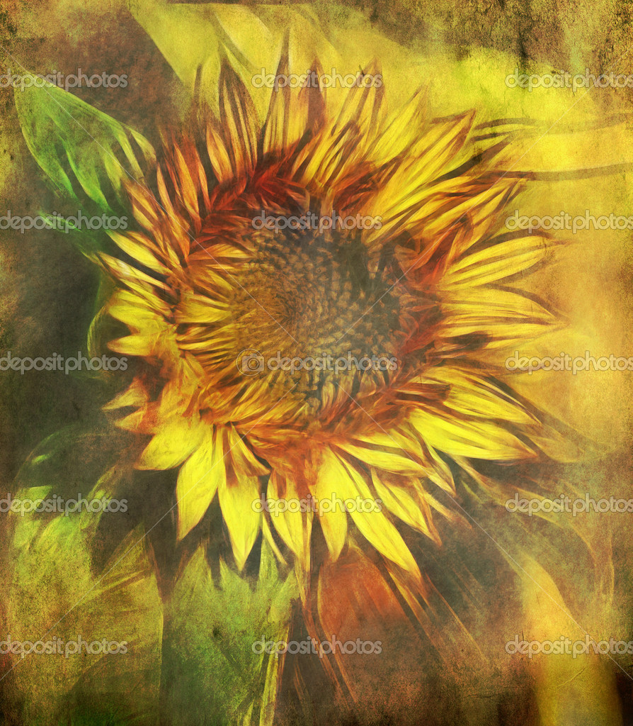Vintage background with sunflower