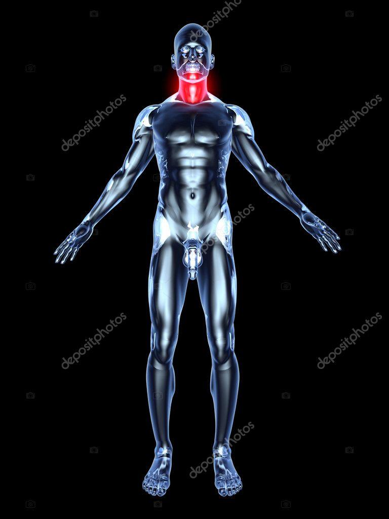 Sore Throat - Anatomy — Stock Photo © Spectral #8482079