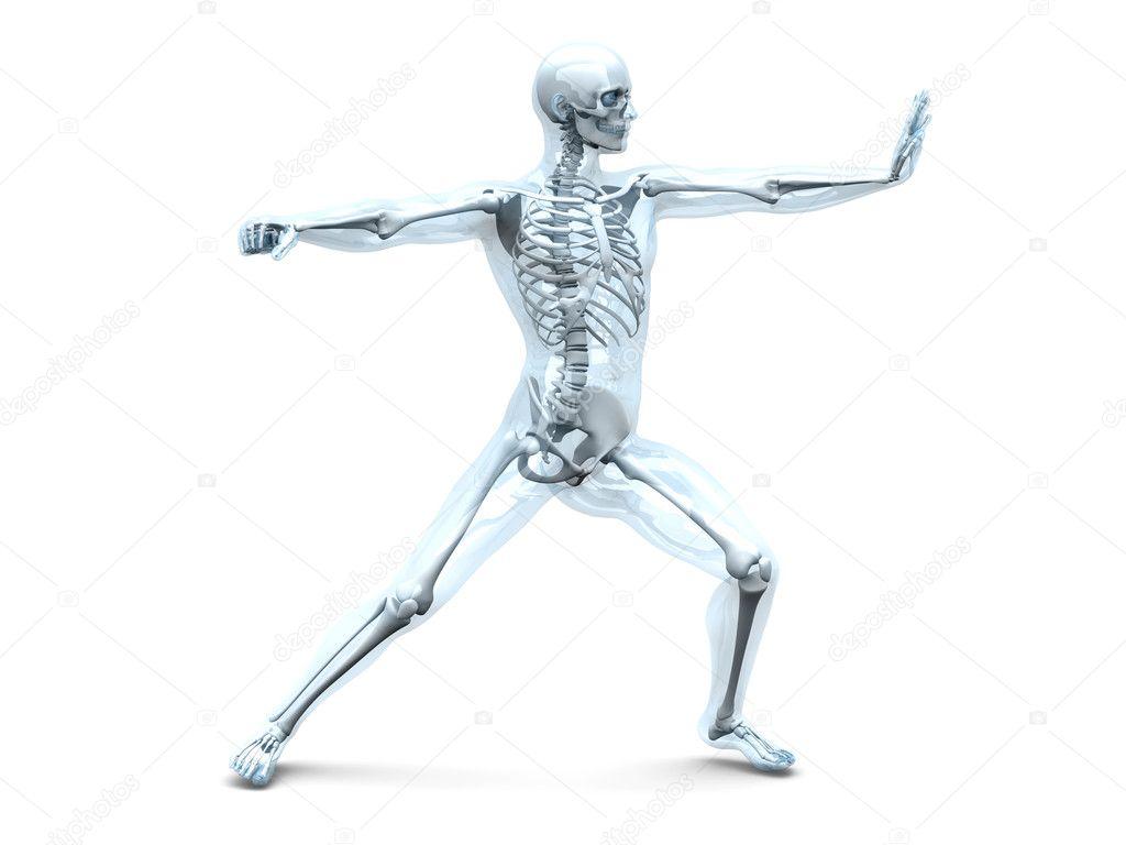 Anatomía - artes marciales — Fotos de Stock © Spectral #8482096